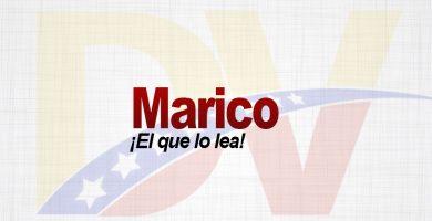 Significado de la palabra Marico