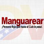 Significado de la palabra Manguarear