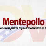 Significado de la palabra Mentepollo