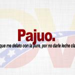Significado de la palabra Pajúo