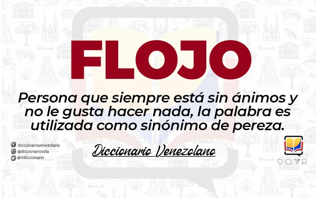 Significado de la palabra Flojo