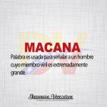 Significado de la palabra Macana