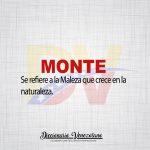 Significado de la Palabra Monte