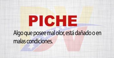 Significado de la palabra Piche