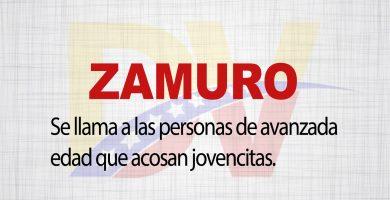 Significado de la palabra Zamuro
