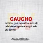 Significado de la palabra Caucho