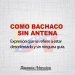 Definición de la Expresión: Como Bachaco sin Antena